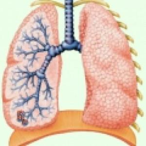 Эпидемиологическая ситуация по туберкулёзу в Карабудахкентском районе